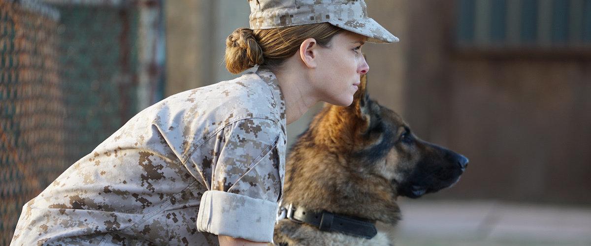 Военные фильмы 2017 года, которые уже можно посмотреть