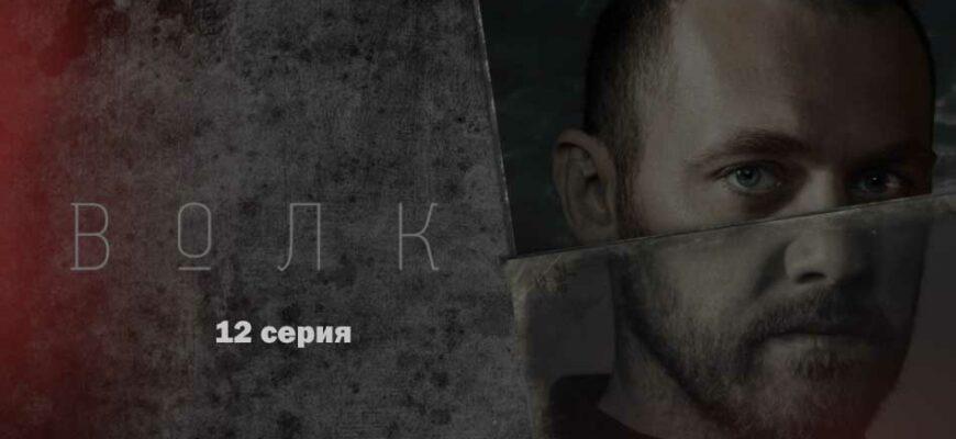 Сериал «Волк» 12 серия